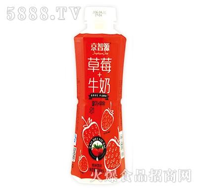 京智源香草莓牛奶乳味饮品500ml产品图