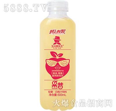 500ml×15轻奢果昔白桃汁饮料
