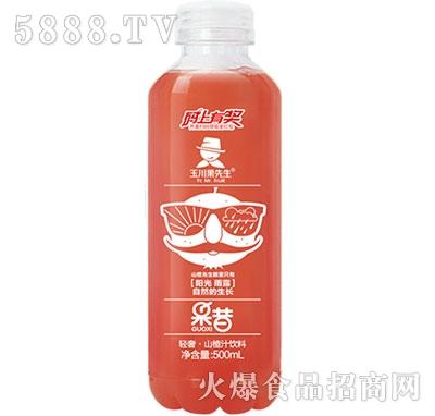 500ml×15轻奢果昔山楂汁饮料