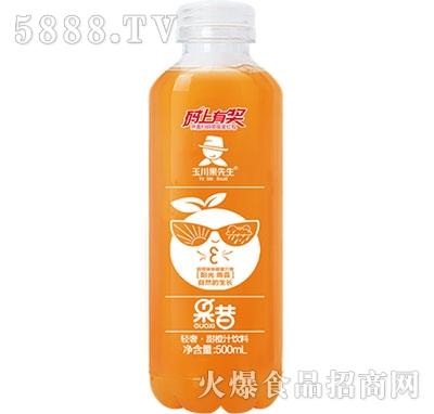 500ml×15轻奢果昔甜橙汁饮料