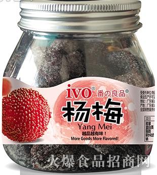 ivo-杨梅产品图