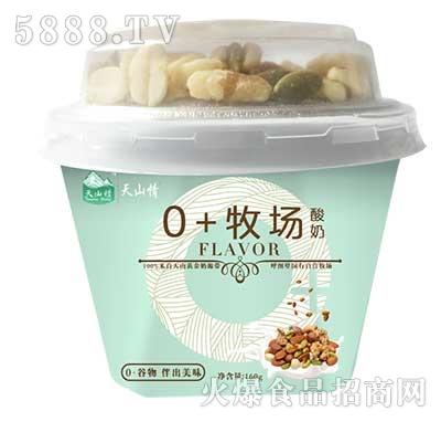天山情0+牧场酸奶160g