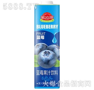 蜜沁源蓝莓汁1L