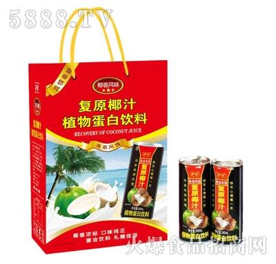 伊仕复原椰汁植物蛋白饮料