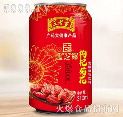 王老吉枸杞菊花茶310ml