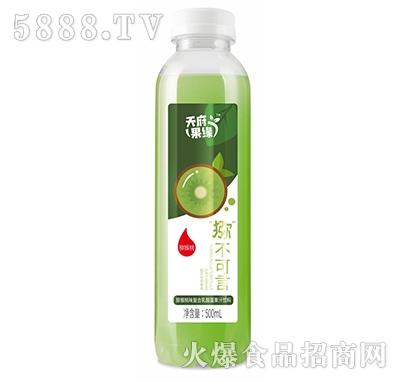 天府果缘猕猴桃味复合乳酸菌果汁饮料500ml产品图
