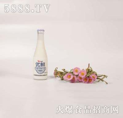 壹鹏优鲜中老年牛奶220g