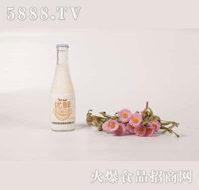 壹鹏优鲜臻品鲜牛奶220g