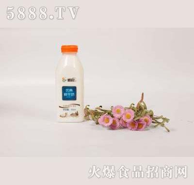 壹鹏优典鲜奶500ml