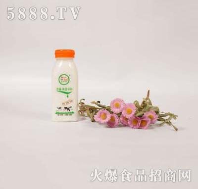壹鹏牧场鲜奶250ml