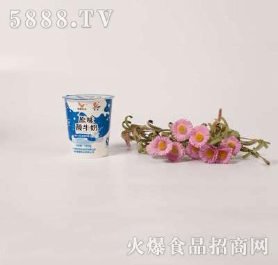 壹鹏原味酸奶杯150g