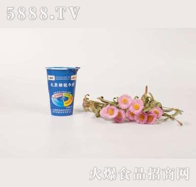 壹鹏无蔗糖酸奶杯180g