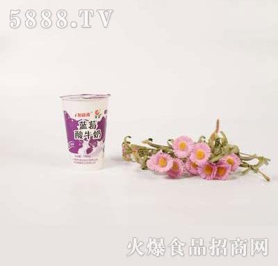 壹鹏蓝莓酸奶杯180g