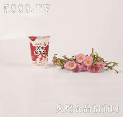 壹鹏大枣酸奶杯180g
