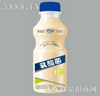 睿田乳酸菌乳酸菌风味饮品原味340ml