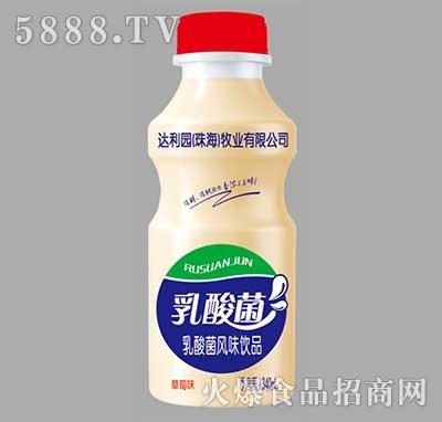 达利园乳酸菌乳酸菌风味饮品草莓味340ml