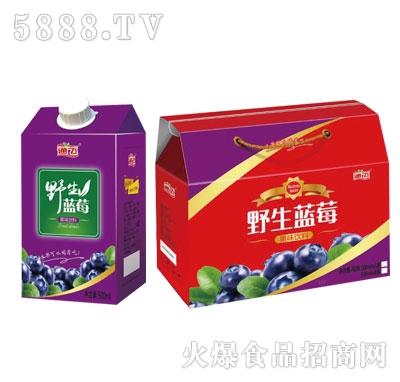 通飞野生蓝莓果味饮料