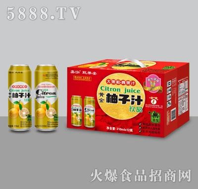 嘉泓柚子汁310mlX12