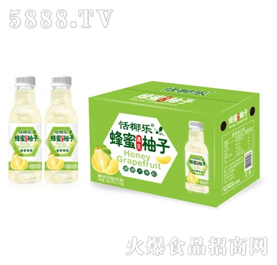 恬椰乐蜂蜜柚子风味饮料450mlX15