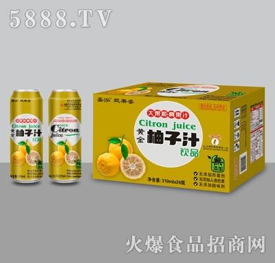 嘉泓柚子汁310mlX24