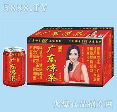 椰星广东凉茶310g箱