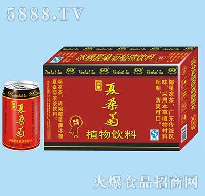 椰星冰糖夏桑菊凉茶310mlx24