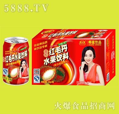 椰星红毛丹水果饮料310gx24