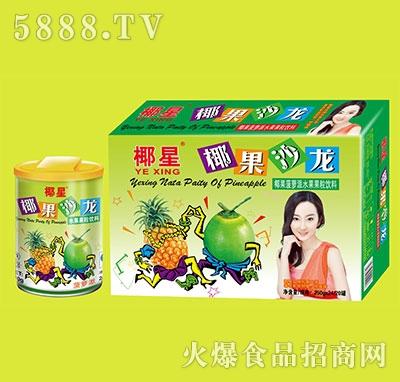 椰星椰果沙龙水果饮料