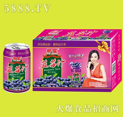 椰星蓝莓汁箱