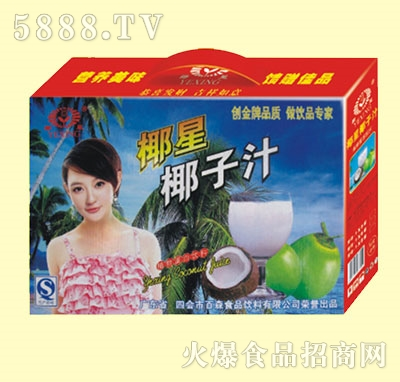 椰星椰子汁礼盒