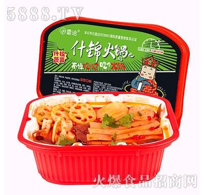 雷洽蔬菜什锦自热火锅