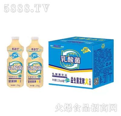 钙动力乳酸菌饮品1.25kgX6