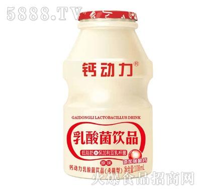 钙动力乳酸菌饮品108ml