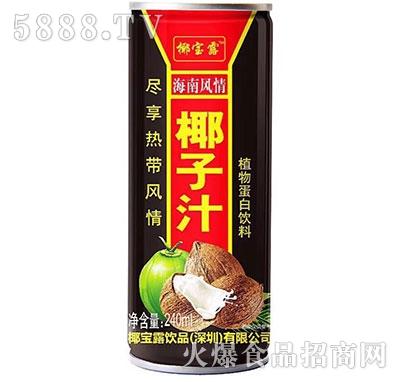 椰宝露海南风情椰子汁植物蛋白饮料240ml
