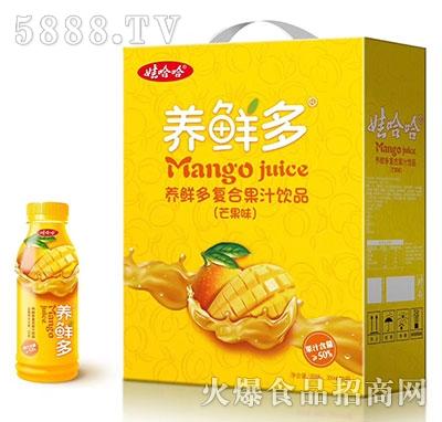 娃哈哈养鲜多50%复合芒果汁礼盒
