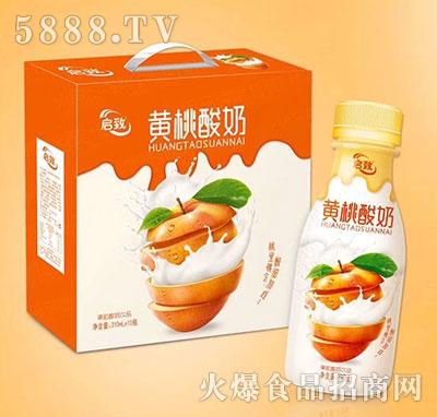 启致黄桃果粒酸奶饮品310ml×10瓶