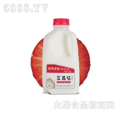 藏秘灵菇发酵型酸奶草莓味1kg