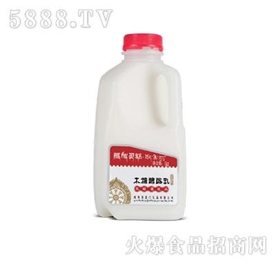 藏秘灵菇发酵型酸奶木糖醇酪乳1kg