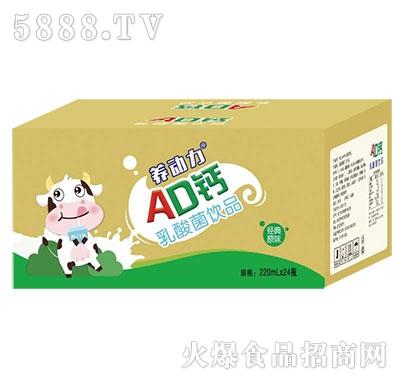 养动力AD钙乳酸菌220mlx24