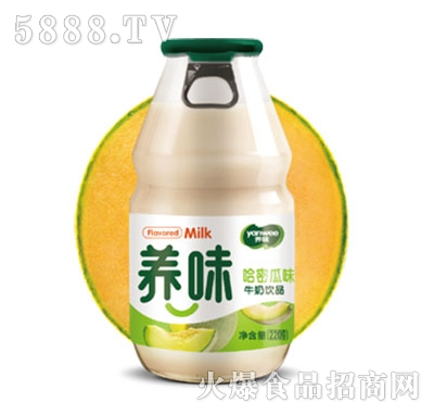 养味牛奶饮品哈密瓜味220g产品图