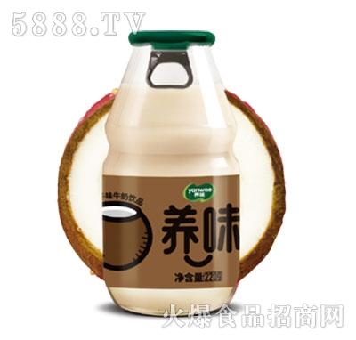 养味牛奶饮品椰子味特渠专供220g