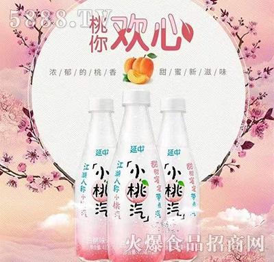 延中小桃汽白桃味汽水饮料410ml