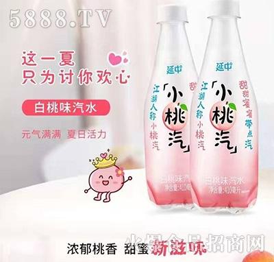 延中小桃汽白桃味汽水410ml