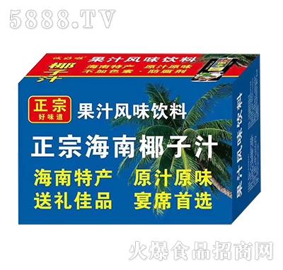 正宗椰子汁果汁饮料(箱装)产品图