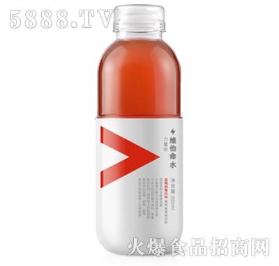 农夫山泉蓝莓树莓味营养素风味饮料