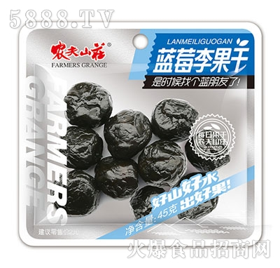 农夫山庄蓝莓李果干20克
