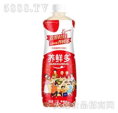 养鲜多乳酸菌果汁草莓味1.25L