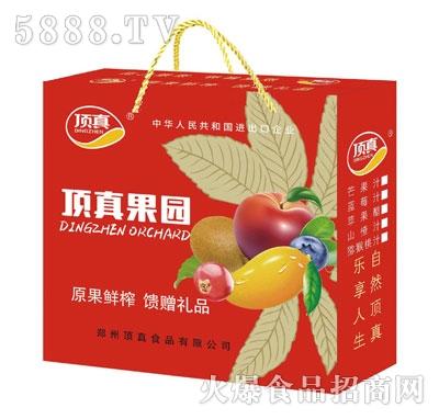 顶真果园果汁礼盒300mlX10