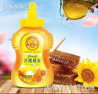 佰年宏云洋槐蜂蜜500克