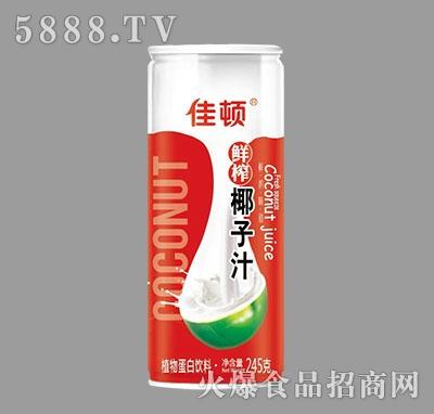 佳顿鲜榨椰子汁植物蛋白饮料245g产品图